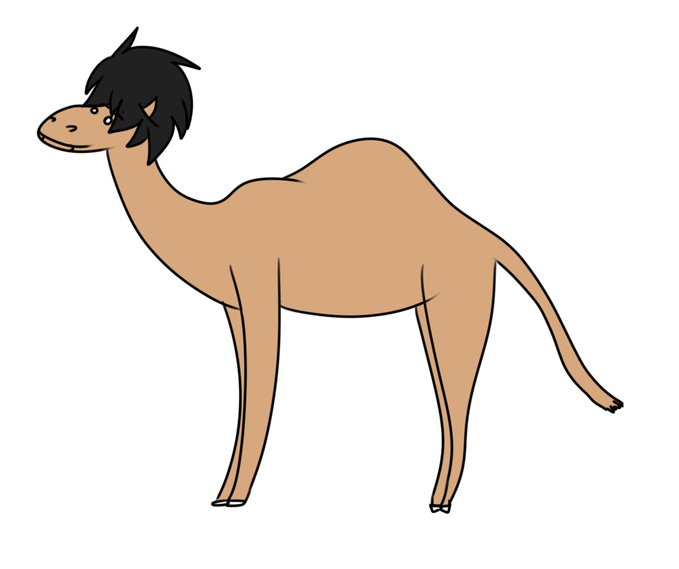976x818 camels drawing simple huge freebie! download for powerpoint