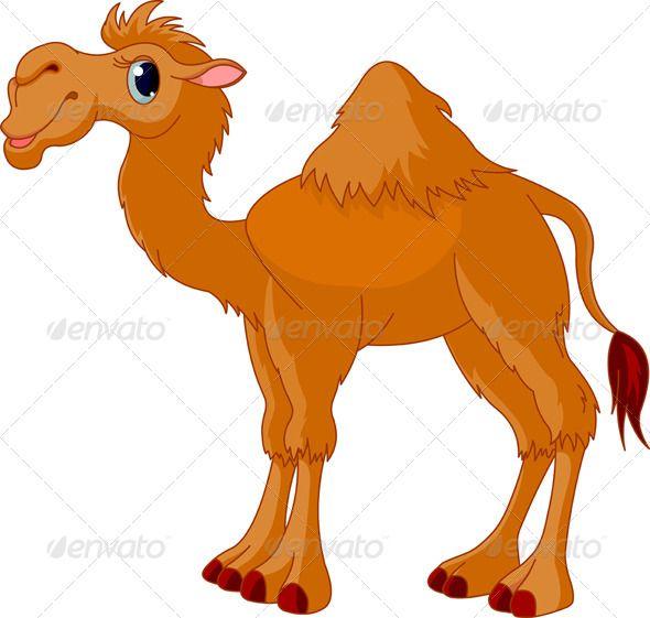 590x561 Drawing A Cartoon Camel Craft Ideas Drawings, Kangaroo Drawing