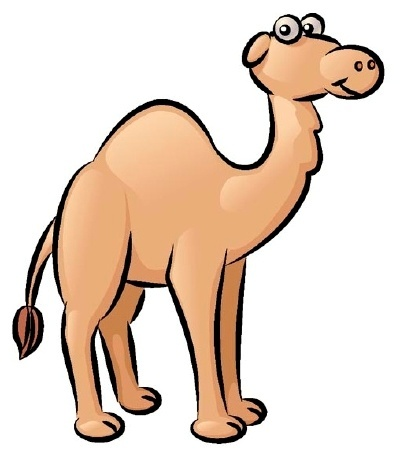 400x463 How To Draw Camels Drawing Tutorials Drawing How To Draw