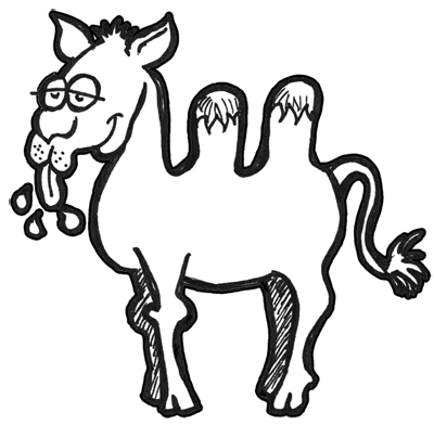 400x392 How To Draw Cartoon Camels With Easy Step