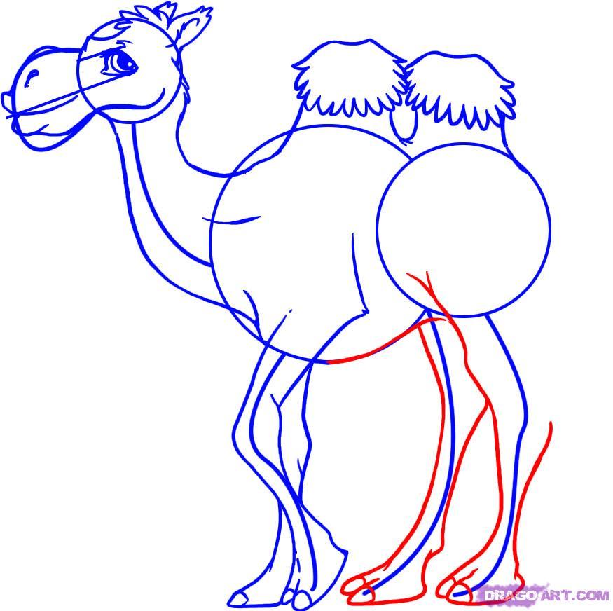 875x872 How To Draw A Cartoon Camel, Step
