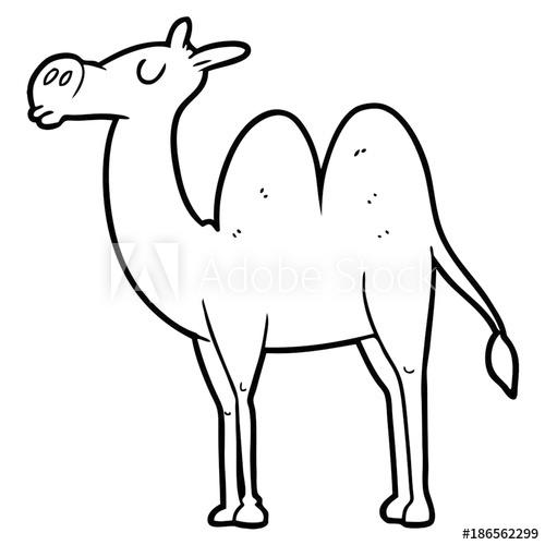 500x500 Cartoon Camel