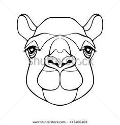 Camel Face Drawing