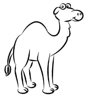 285x329 how to draw a camel howstuffworks