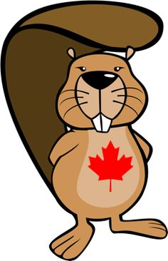 Canadian Beaver Drawing