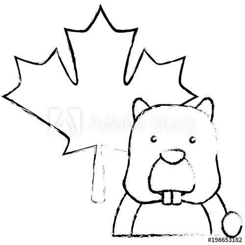 500x500 beaver rodent maple leaf canadian concept vector illustration