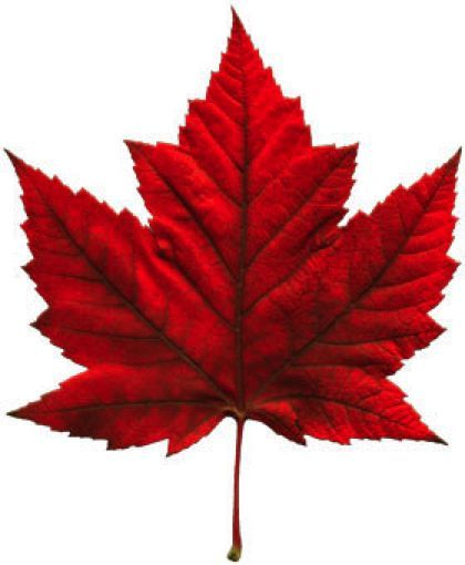 420x510 Things You Didn't Know About Canadian English