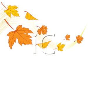 300x299 Maple Leaf Clipart Leaf Drawing