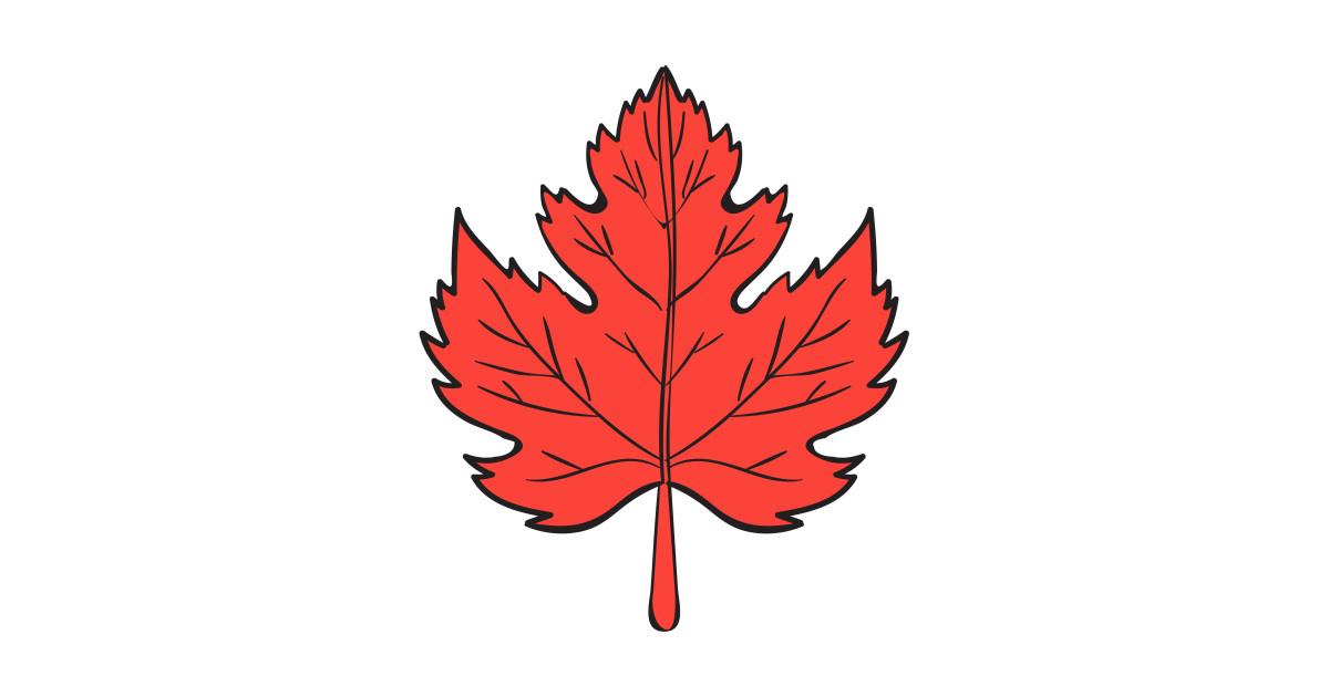 1200x630 Maple Leaf Drawing