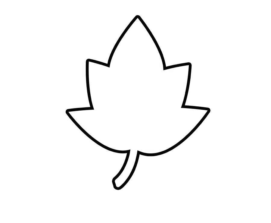 900x740 outline of leaf leaf outline outline leaf shapes