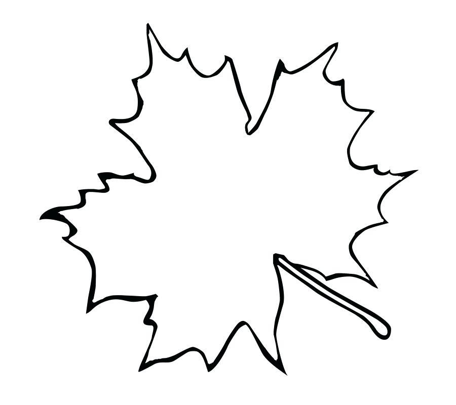 900x800 Sugar Maple Leaf Outline Clip Art Fish Template Canadian Tattoo