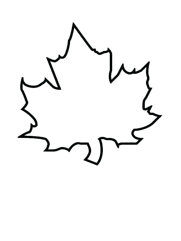 600x800 Canadian Maple Leaf Coloring
