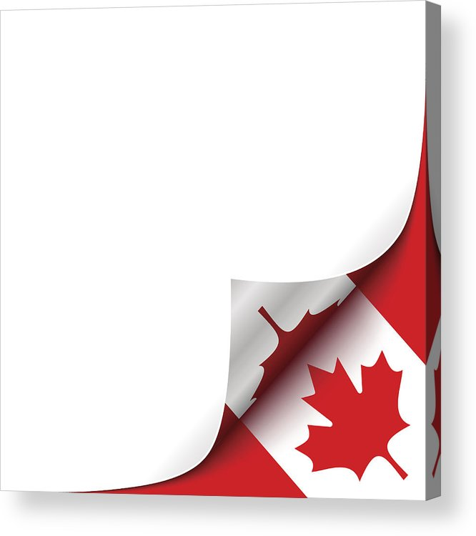 666x750 Curled Up Paper Corner On Canadian Flag Background Vector