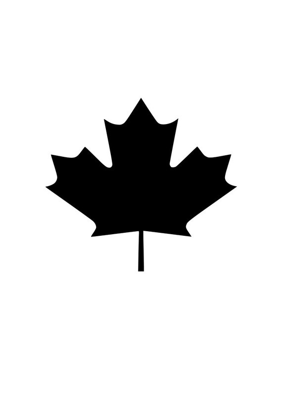 570x806 Exquisite Canadian Maple Leaf Outline Coloring For Funny Canadian