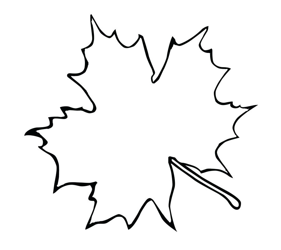 900x800 Maple Leaf Outline Template Canadian Maple Leaf Outline Tattoo