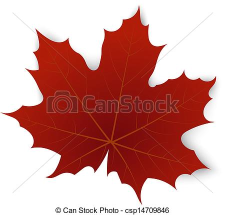 450x430 Red Maple Leaf On A White Background