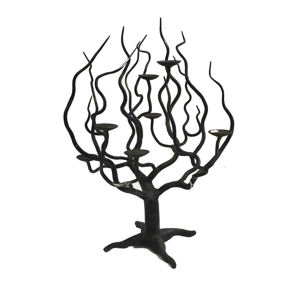 1000x1000 Tree Candelabra Jermaine Gallacher