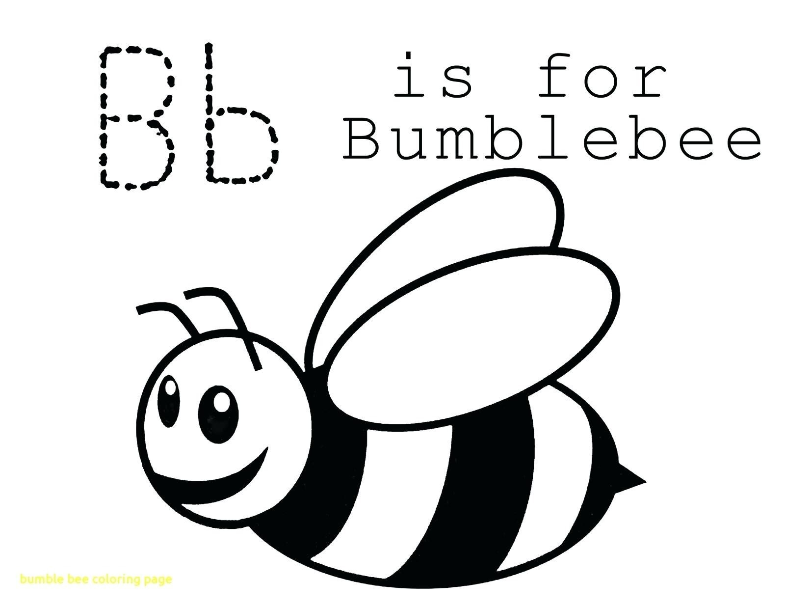 1600x1236 Bumblebee Car Drawing Bumble Bee Template Pictures Designs Full
