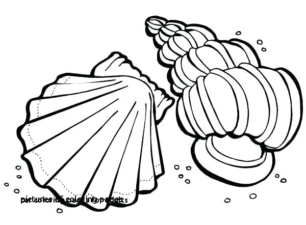 600x442 Coloring Pagescom Cars Coloring Pages Com Beautiful Car Coloring