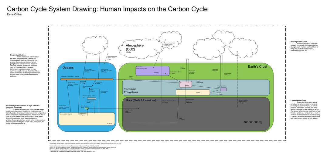 1100x523 river to river carbon cycle system drawing