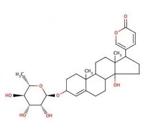 320x275 Proscillaridin A Cas Scbt