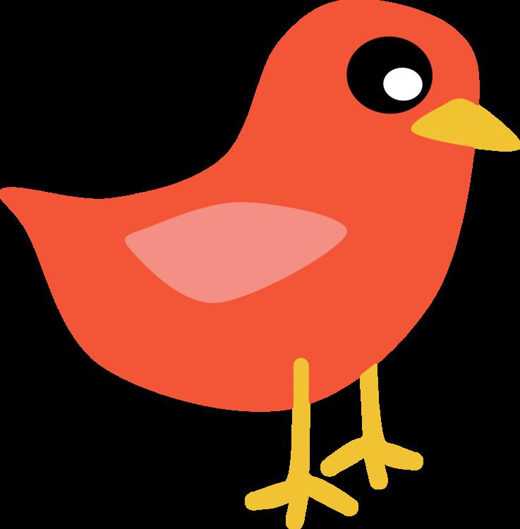 737x750 Clip Art Christmas Owl Northern Cardinal Bird Drawing Cc0