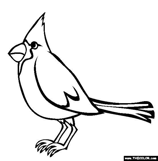 554x565 Northern Cardinal Bird Outline Jerusalem House