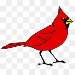 260x260 Northern Cardinal Png