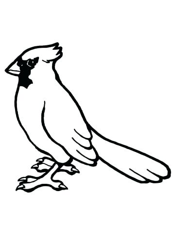 360x480 Printable Bird Coloring Pages Click To See Printable Version