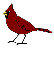 211x300 Color Drawing Of The State Bird