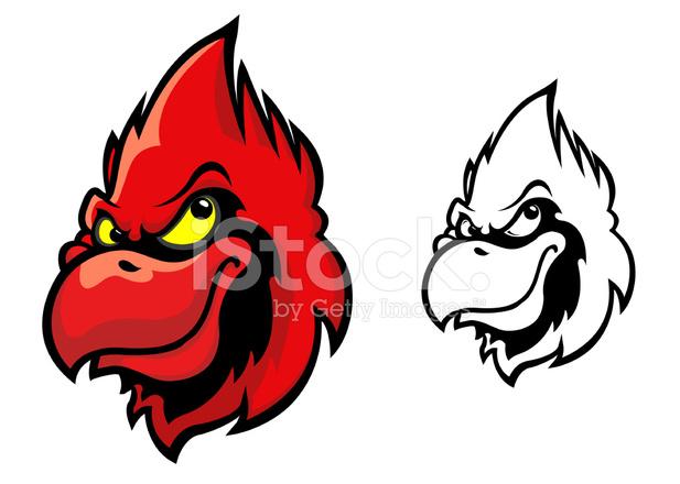 617x440 Red Cardinal Bird Stock Vector