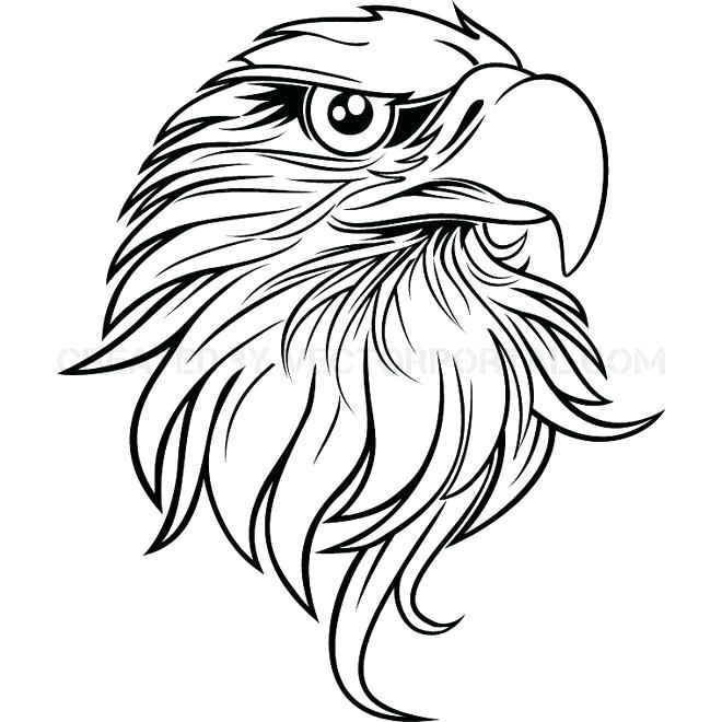 660x660 Bird Drawing Outline