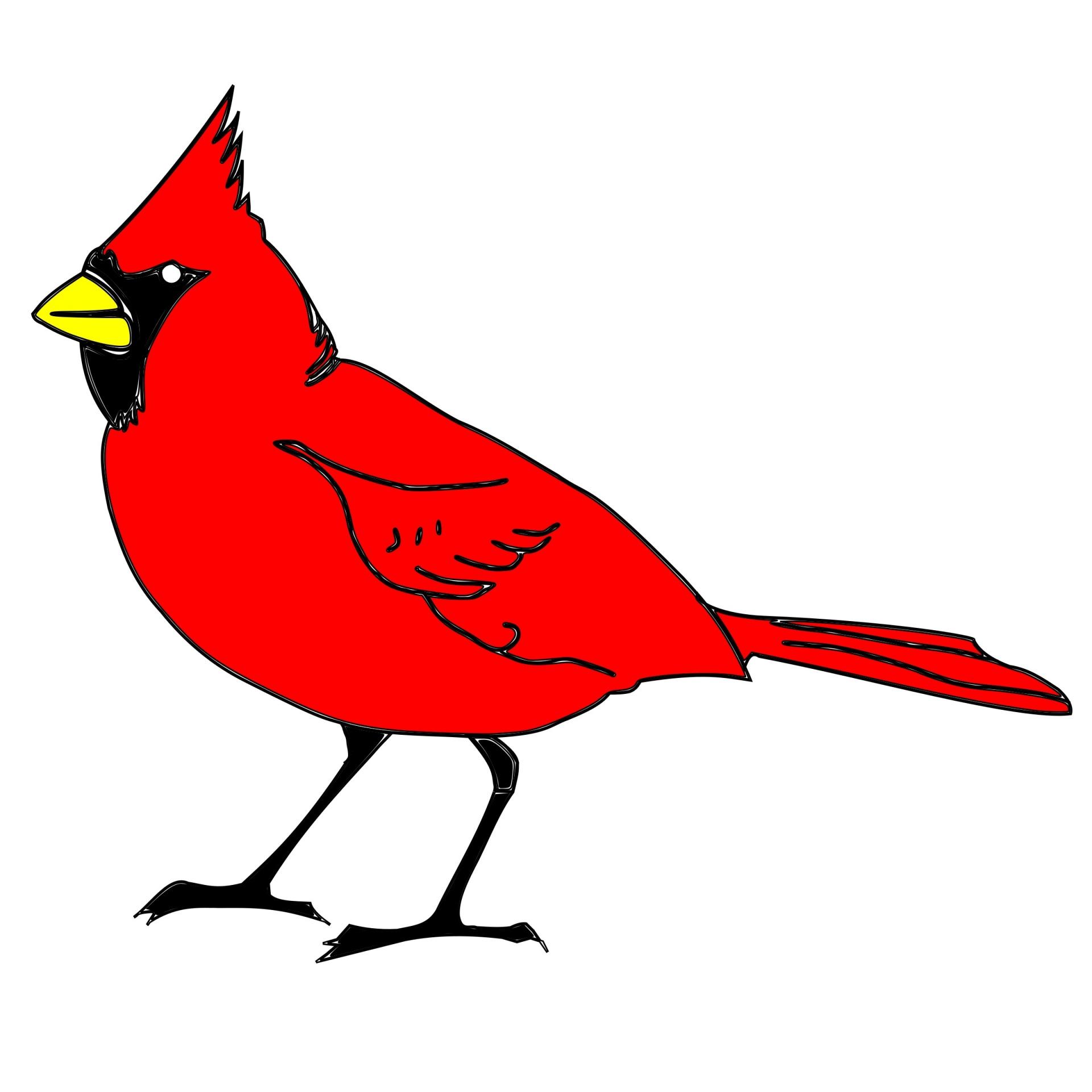 1920x1920 Cardinal, Bird, Art, Clipart, Drawing