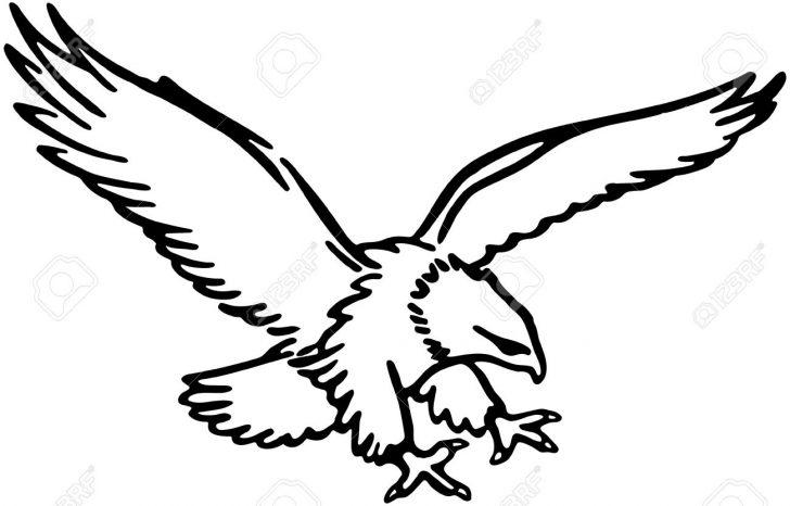 728x466 Cardinal Bird Drawing Images Cute Step Art For Beginners Carmi