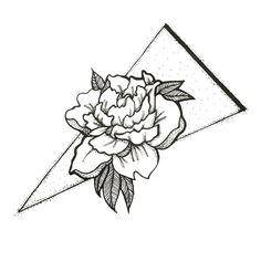 Carnation Line Drawing