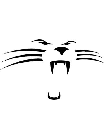 360x480 Carolina Panthers Panthers Carolina Panthers Wallpaper