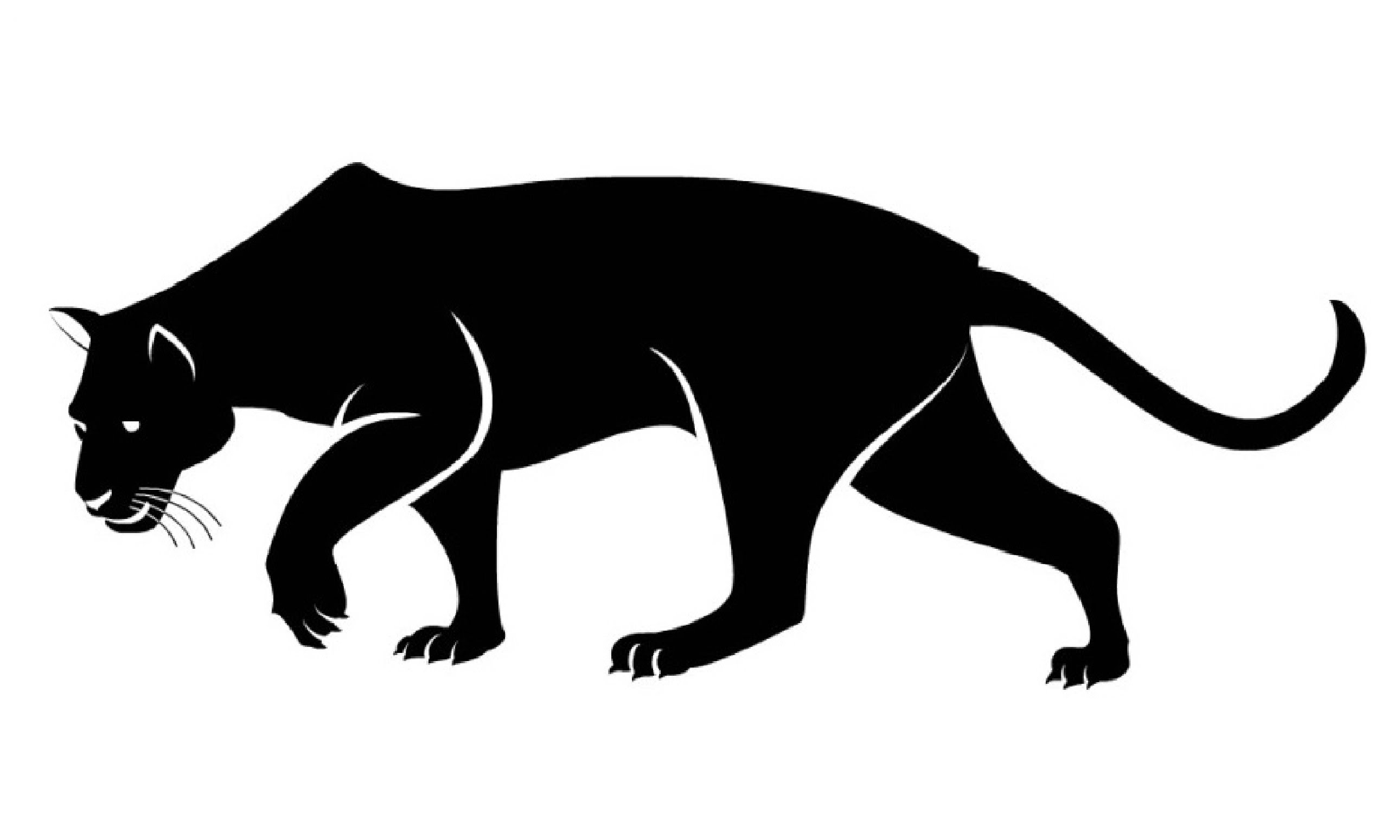 2581x1549 Panther Drawing Easy For Free Download
