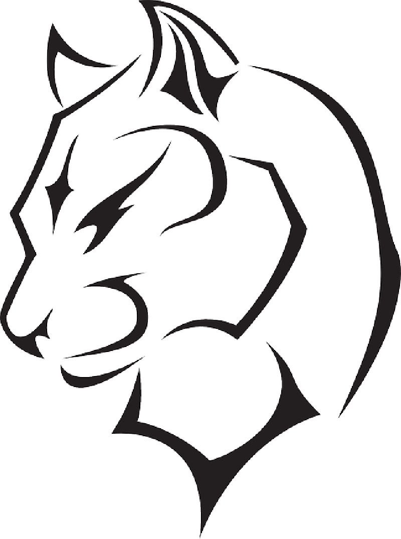 800x1075 Panther Drawing Outline Clipart Best Logo Image