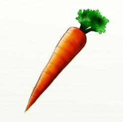 248x247 how to draw a carrot fun drawing tutorials carrot drawing