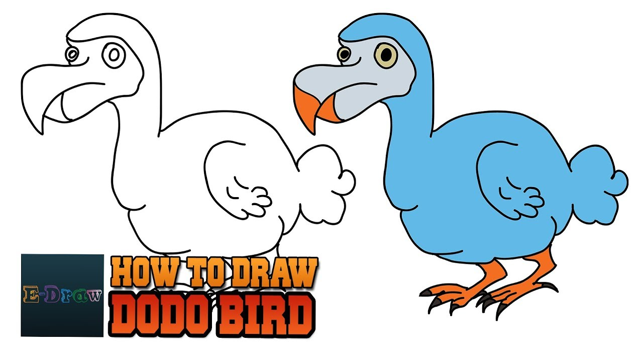 1280x720 How To Draw A Dodo Bird Cartoon Dodo Bird For Kids Step