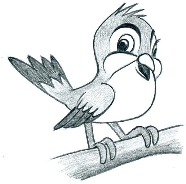 600x596 Learn To Draw Cartoon Bird Very Simple In Few Easy Steps Outline