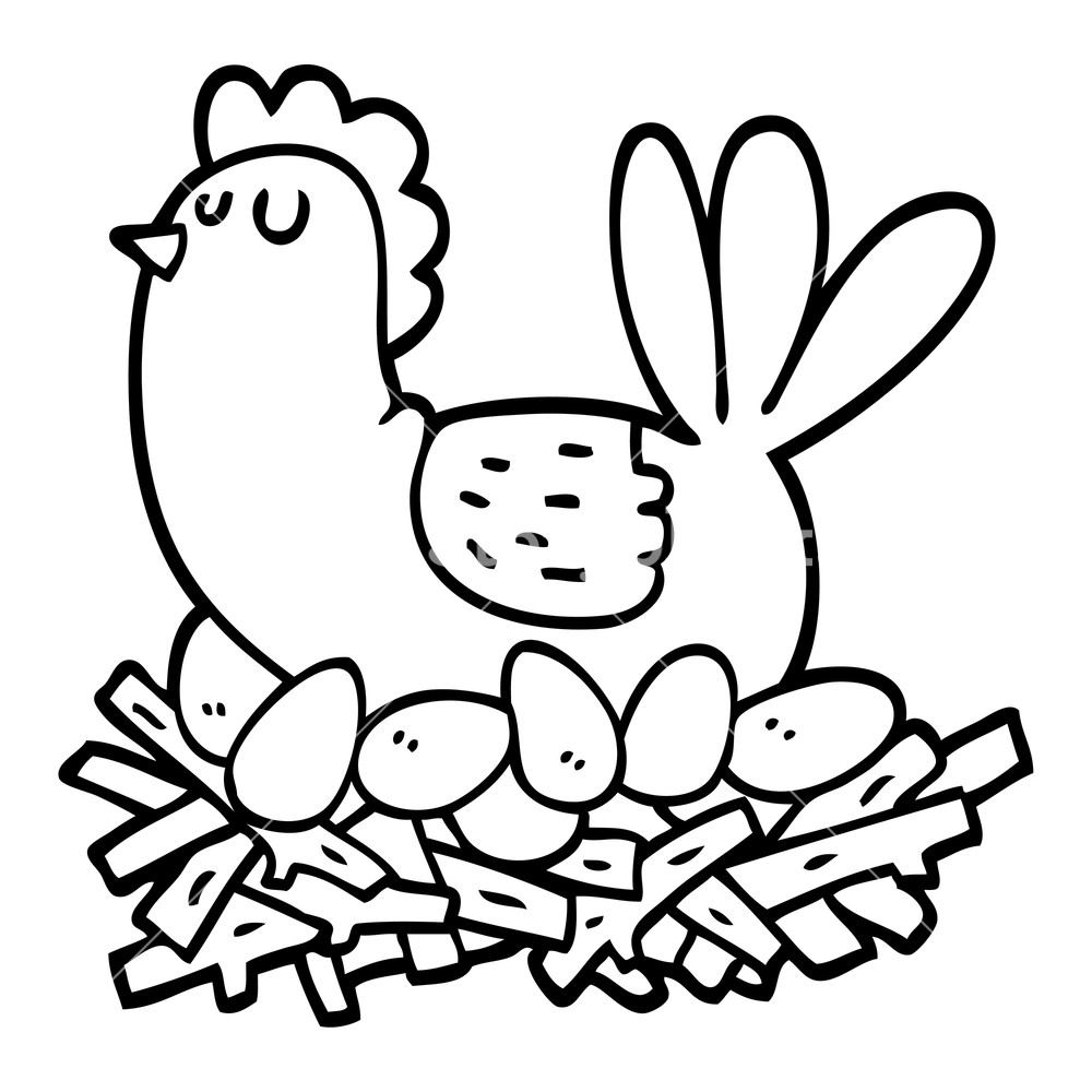 1000x1000 Black And White Cartoon Chicken On Nest Of Eggs Royalty Free Stock