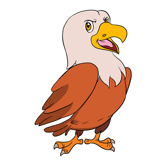 680x678 How To Draw A Cartoon Hawk Really Easy Drawing Tutorial
