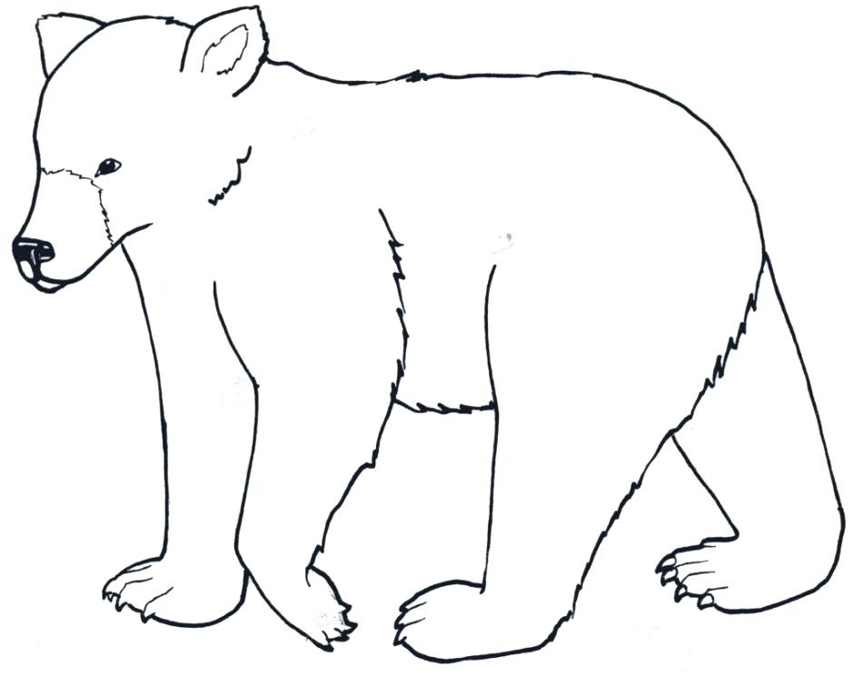 940x745 Bear Cartoon Drawing Polar Bear Coloring Pages For Kids Polar Bear