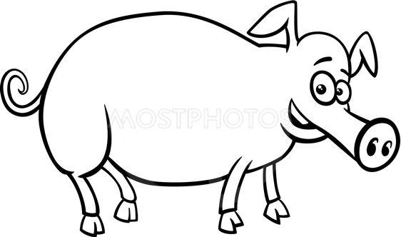 562x332 Pig Farm Animal Character C
