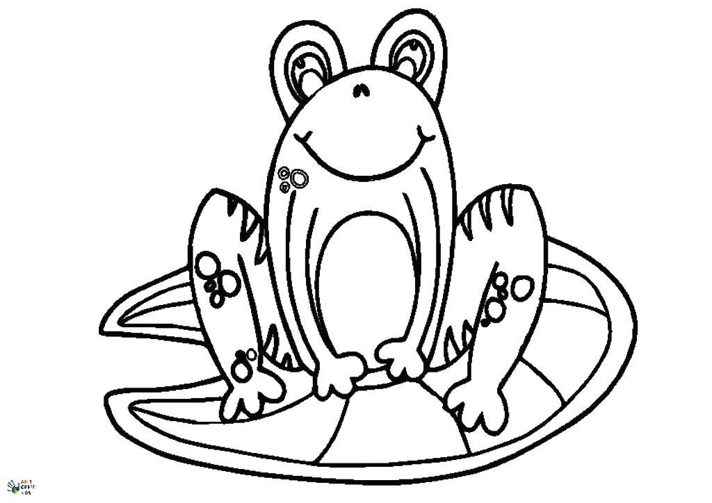 1024x724 outline of a frog outline of a frog outline frog drawing