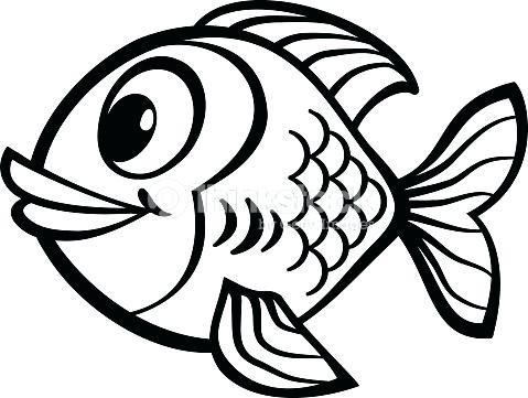 479x361 Drawings Of Cartoon Fish Fish Sketch Draw Cute Cartoon Fish