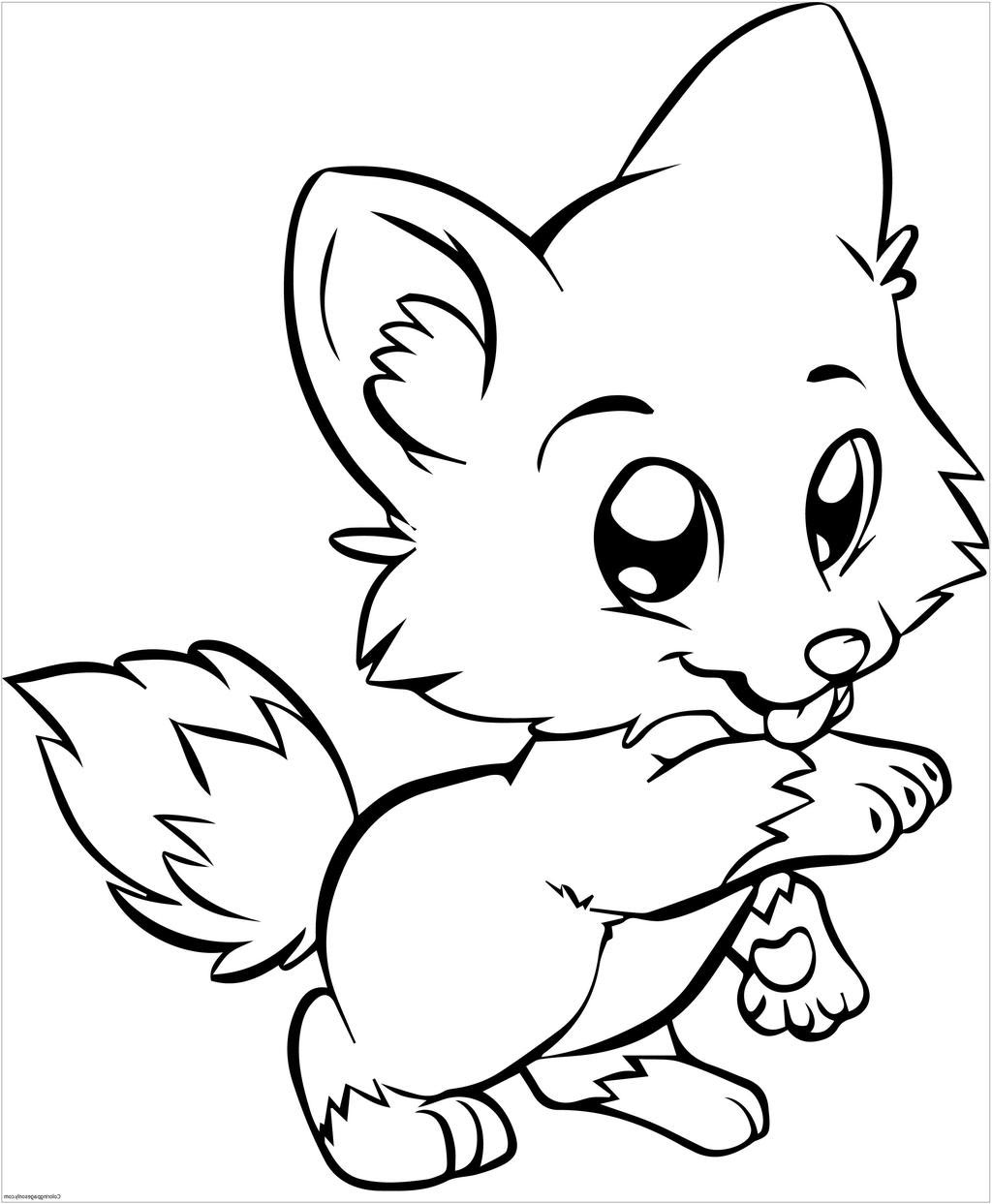 1024x1243 Cat And Dog Cartoon Drawing Simple Cute Free Pictures Outline