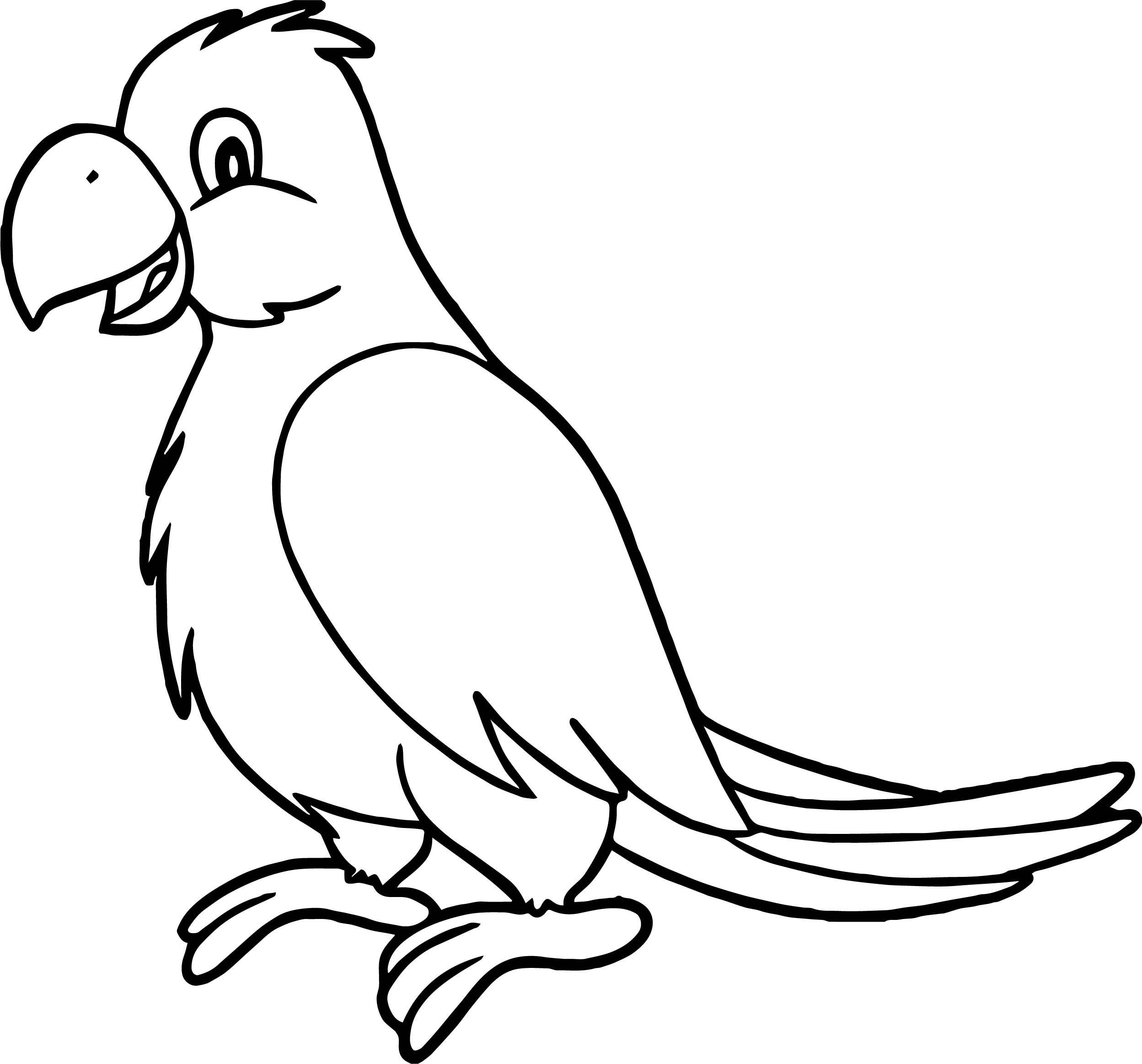 2497x2326 parrot drawing for kids and parrot cartoon drawing parrot drawing