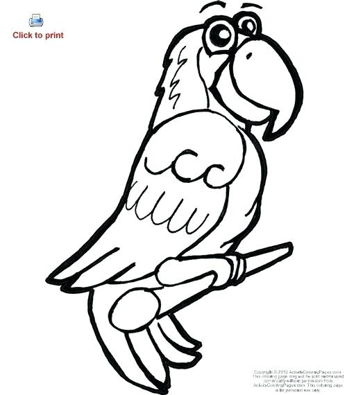 500x570 simple parrot drawing parrot cartoon simple line drawing parrot